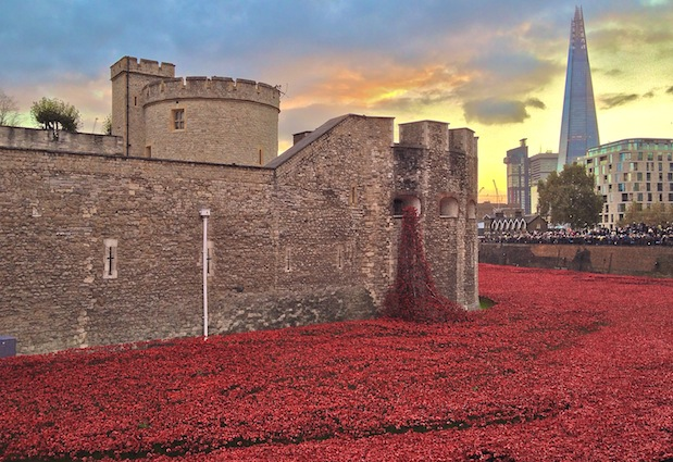 Poppies at the Tower of London and The Shard